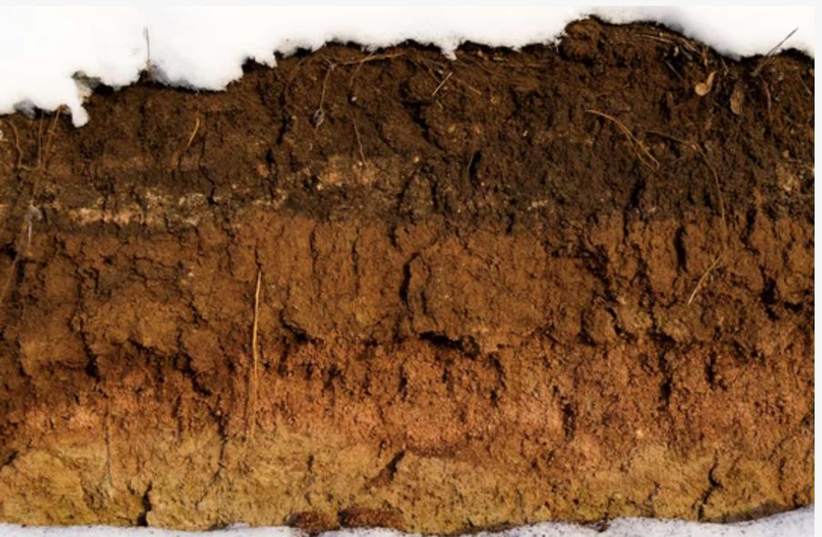 layers of soil soil carbon